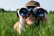 Как да изберем подходящ бинокъл за наблюдение на птици и животни
