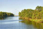 Разходка с лодка сред птичия рай на река Велека